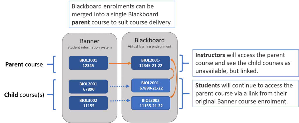 """Banner module enrolments are merged into a single """"parent"""" Blackboard course"""